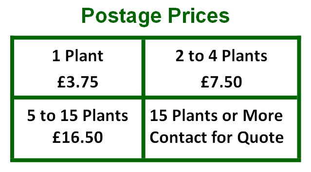 Prices 3